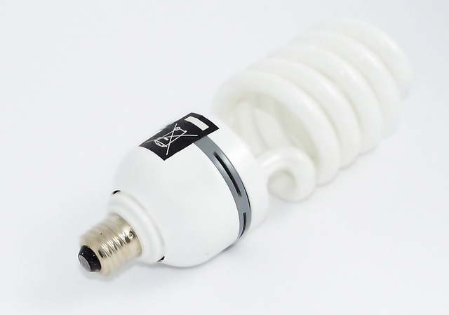 a fluorescent light bulb